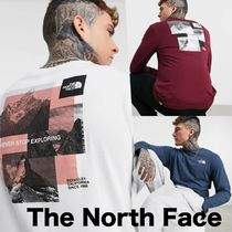 ■The North Face■海外限定 グラフィック ロングT (送関税込)