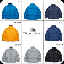 [THE NORTH FACE] ★韓国 大人気 ★RIVERTON EX E-BALL JACKET 3