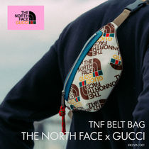 THE NORTH FACE x GUCCI Belt Bag