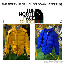 THE NORTH FACE × GUCCI DOWN JACKET ダウンコート2色