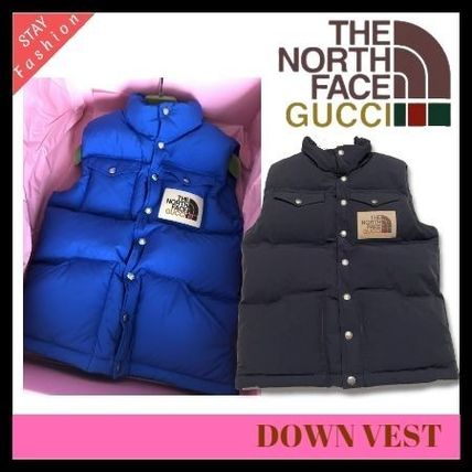 歴史的コラボ入手困難!GUCCI×THE NORTH FACE DOWN VEST