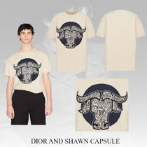 21SS【DIOR x SHAWN】OVERSIZED DIOR AND SHAWN T-SHIRT Tシャツ
