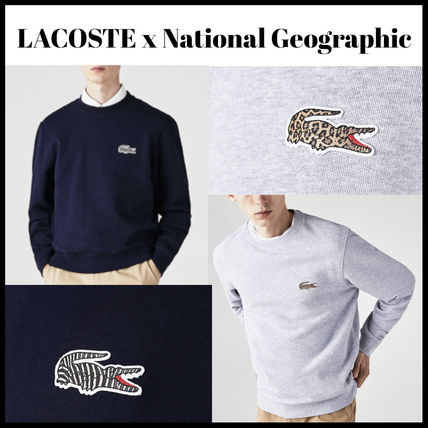 LACOSTE x National Geographic 長袖スウェット ロゴ入り