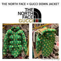 THE NORTH FACE × GUCCI DOWN JACKET 男女OK