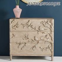 ★ANTHROPOLOGIE★Handcarved Ornithology Three-Drawer Dresser