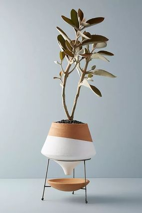 Anthropologie 花瓶・植木鉢 関税・送料込み☆Dipped Clay Pot + Stand(2)