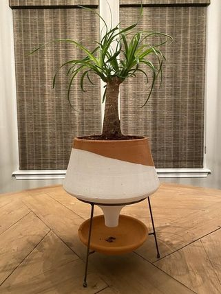 Anthropologie 花瓶・植木鉢 関税・送料込み☆Dipped Clay Pot + Stand(5)