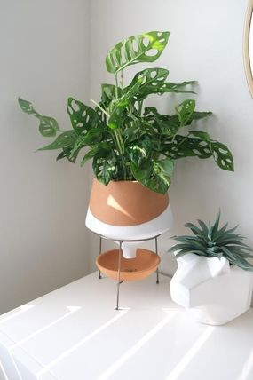 Anthropologie 花瓶・植木鉢 関税・送料込み☆Dipped Clay Pot + Stand(7)