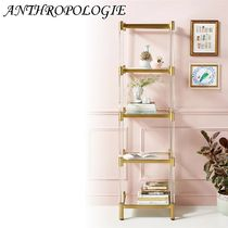 ★ANTHROPOLOGIE★Oscarine Narrow Lucite Mirrored Bookshelf