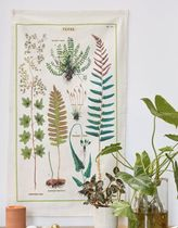 【Urban Outfitters】標本 タペストリー Cavallini Papers fern