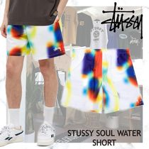 NEW!!今シーズン大活躍!【STUSSY】SOUL WATER SHORT 水着
