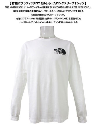 THE NORTH FACE Tシャツ・カットソー 海外限定 THE NORTH FACE ノースフェイスCOORDINATES LS TEE即納(10)