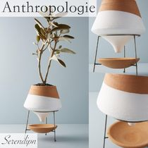 ◎Anthropologie◎Dipped Clay Pot + Stand 植木鉢 送料込