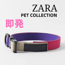 ZARA(ザラ) 首輪・ハーネス・リード ZARA【PET COLLECTION】PET COLLECTION COLOURED NECKLACE