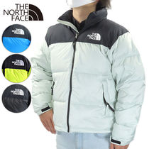 THE NORTH FACE JACKET NF0A3C8D GREEN MIST V391