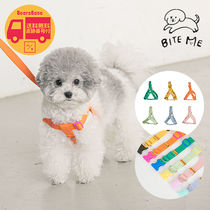BITE ME Candy Crayon Harness + Candy Crayon Lead Set BBH1815