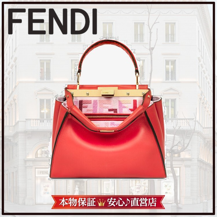 Fendi ☆ bag of the collection of New Year Capsule (FENDI/バッグ・カバンその他) 8BN244AEUJF1DH0