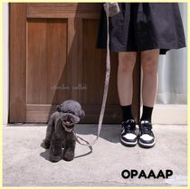 OPAAAP otember collor 首輪・リード・プーバッグセット グレー